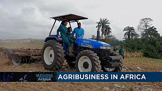 Focus on Burkina's development plan and agribusiness in Africa [Business Africa]