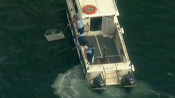 Six people dead after tourist seaplane crashes in Sydney
