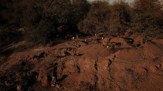 Nine illegal miners killed in South Africa - police