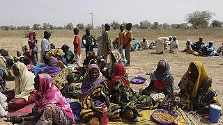 Cameroun : deux morts dans une attaque de Boko Haram dans l'Extrême-Nord
