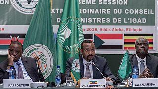 Soudan du Sud : l'Igad rejette un nouveau report de la formation du gouvernement