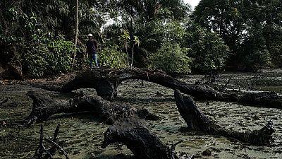 Nigeria – Dépollution du Delta du Niger : lentement, mais pas trop sûrement