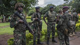 Malawi's army praised for protecting protesters