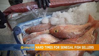 Hard times for Senegal's Fish sellers