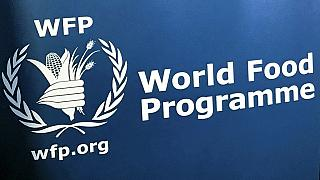 COVID-19: Worst humanitarian crisis since WWII looms - WFP