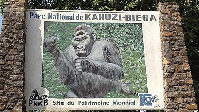 RDC : quatre miliciens tués dans le Parc national
