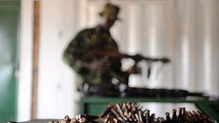 DRC blames Rwandan Hutu rebels for ranger massacre