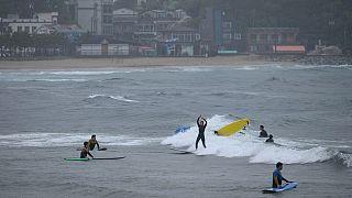 Les surfeurs sud-africains contre le confinement