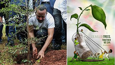 Green Legacy initiative: Ethiopia targets 5 billion trees this year
