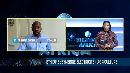 Ethiopia: synergy electricity [Business Africa]