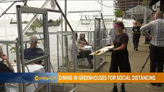 Dining in Greenhouses for social distancing [Morning Call]