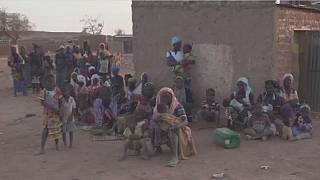 UNHCR launches $186mn crisis appeal for Sahel region