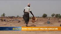 Burkina Faso: Drought threatens agriculture