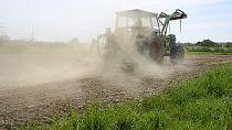 Burkina Faso : l'agriculture en danger
