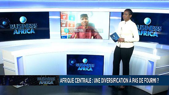 Afrique centrale : une diversification à pas de fourmi ? [Business Africa]