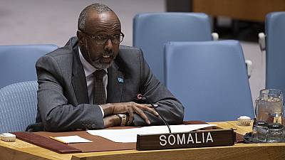 Somalia, Eswatini, Togo, others elected veeps of 75th UN Gen. Assembly