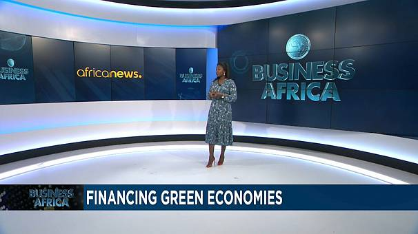 Fighting Climate Change in Africa With Innovative Financing {Business Africa}
