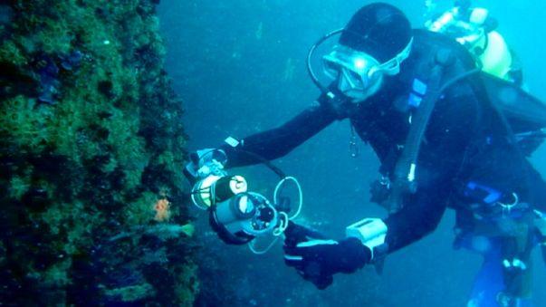 Подводный мирСредиземноморья глазамиокеанографа