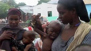 Somalia: politics still holding up vital food aid
