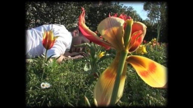 Le professeur Novela et les fleurs