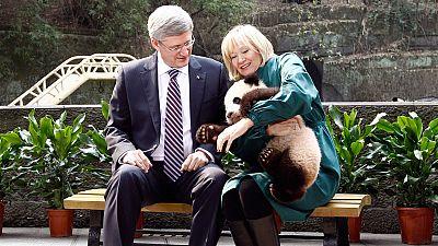 Harper's panda diplomacy