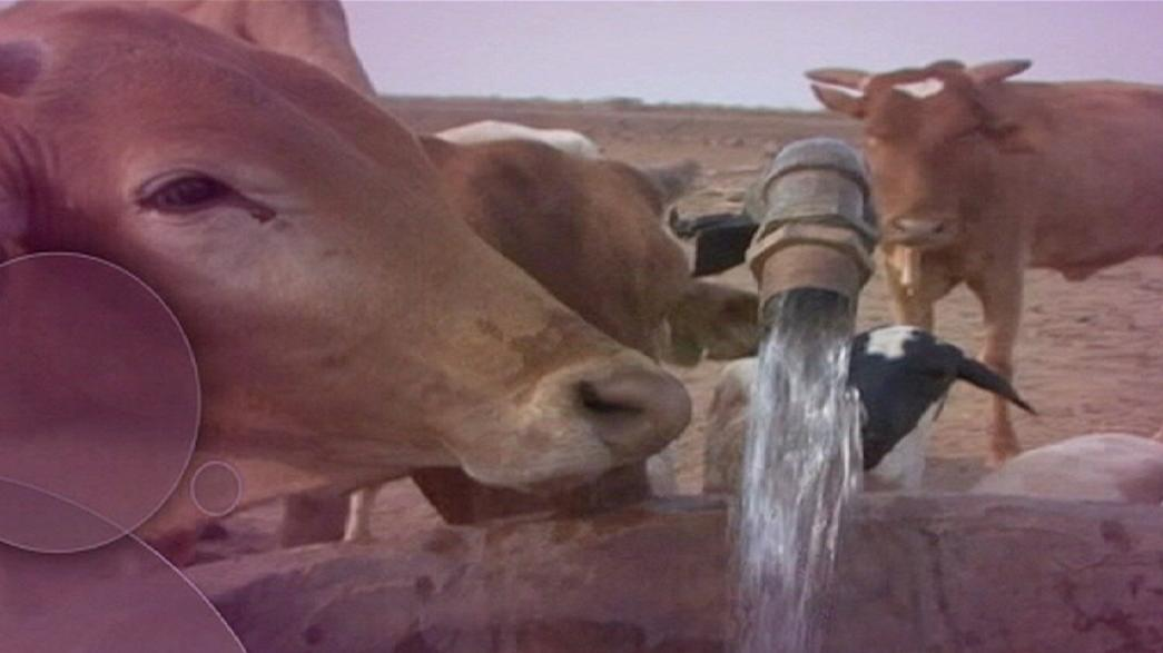 Wassermangel in der Welt: Was kann die EU tun?