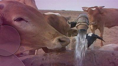 El agua, fuente de conflictos