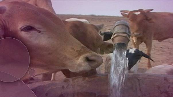 L'eau, source de conflits