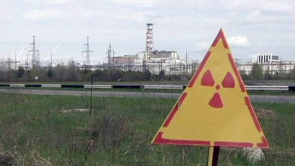 Signs of radiation recovery in Chernobyl wildlife