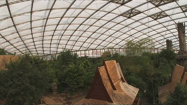 Stefan Lehnert: inventor of the biodome