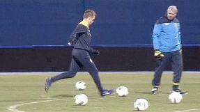 Euro 2012 Preview: Sweden