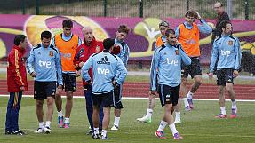 Euro 2012: Spain can cope without Villa and Puyol says Martinez