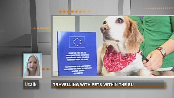 Voyager avec des animaux de compagnie au sein de l'UE