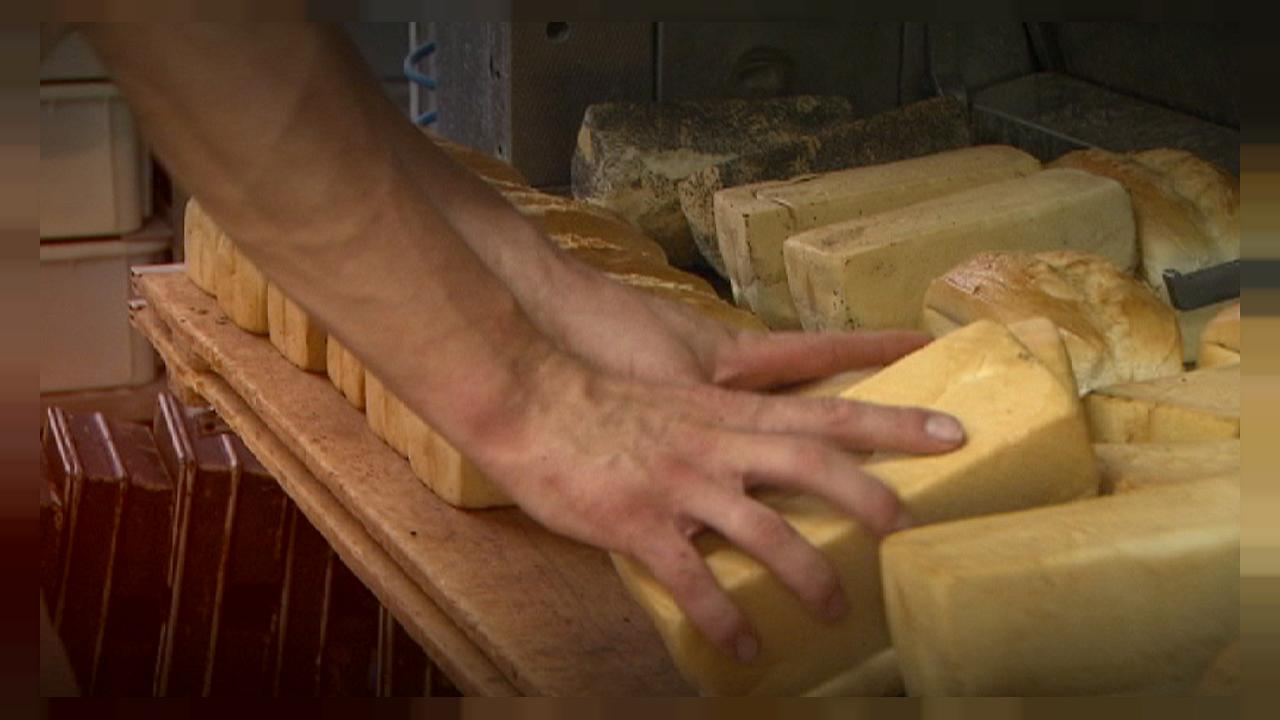 روشی جدید و کم هزینه برای تخمیر بهتر خمیر نان