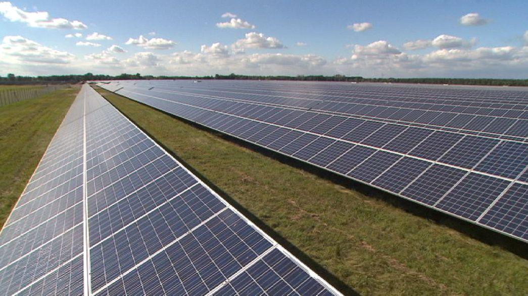 Les éco-industries ont enclenché la révolution verte