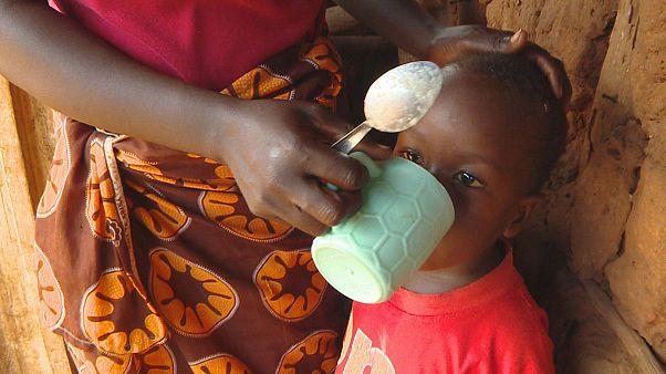 Mikronährstoffe im Maisbrei: Ein Weg aus der Mangelernährung?