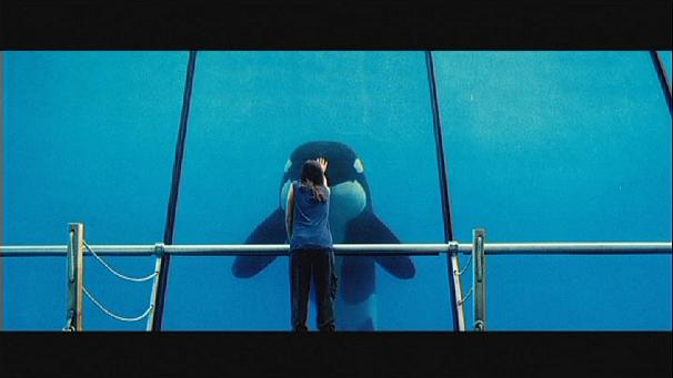"""Rust and Bone"", a different kind of love story"