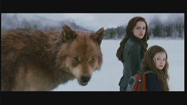 "The Twilight, ""Breaking Dawn"", la suite!"