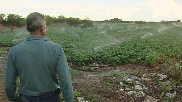 Как восполнить нехватку пресной воды на Кипре?