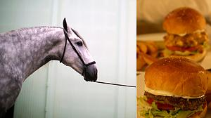 Horse meat found in burgers in UK and Ireland