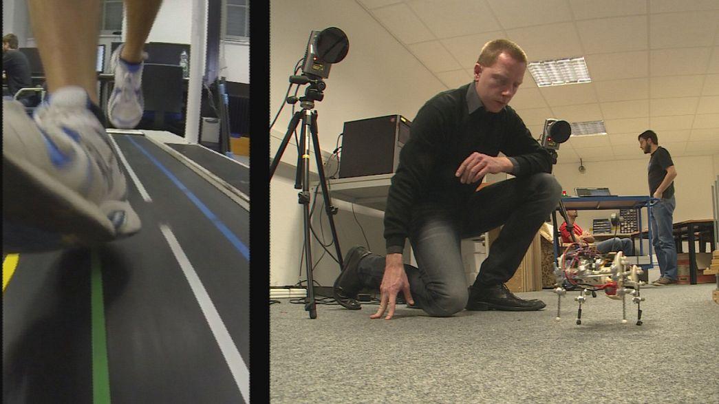 Können Maschinen laufen lernen?