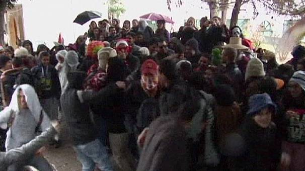 Tunisian students stage Harlem shake protest