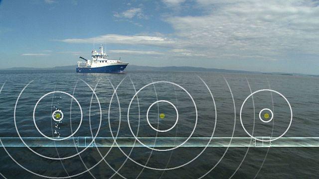 Подводный мир изучают при помощи звуков
