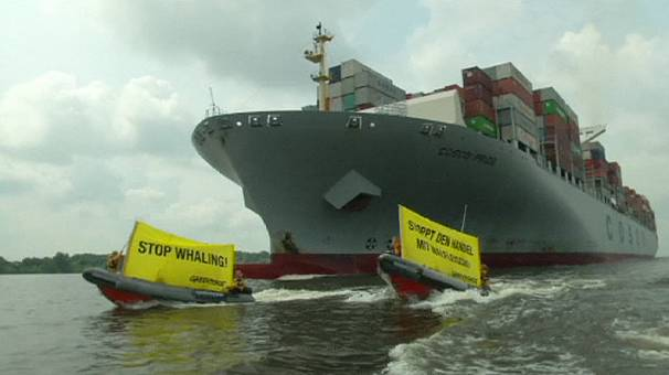 """Stop hunting threatened fin whales,"" Greenpeace activists rally at Hamburg port"