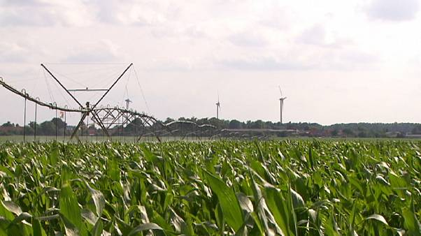 Un'irrigazione intelligente a difesa dell'ambiente