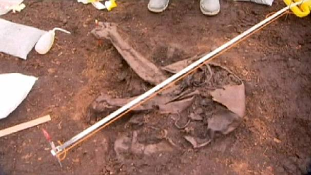 Irish 'bog body' dates backs 4000 years