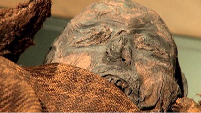 Child finds Egyptian mummy in his grandma's attic