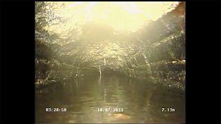Un amas de gras de 15 tonnes découvert dans les égouts à Londres
