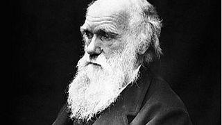 Rétromachine : publication de la théorie de Darwin
