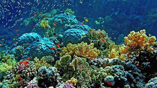 Népszerű nyaralóhelyeket fenyeget a klímaváltozás